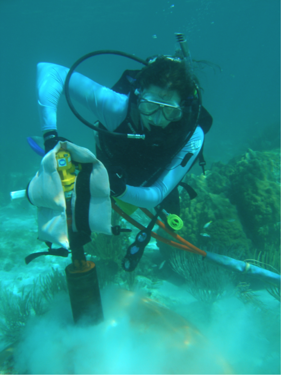 Michèle drilling corals in the Florida Keys