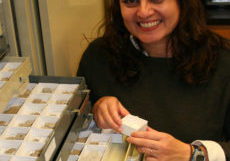 Dena in her old lab at CU Boulder looking at drawers full of fossil insects